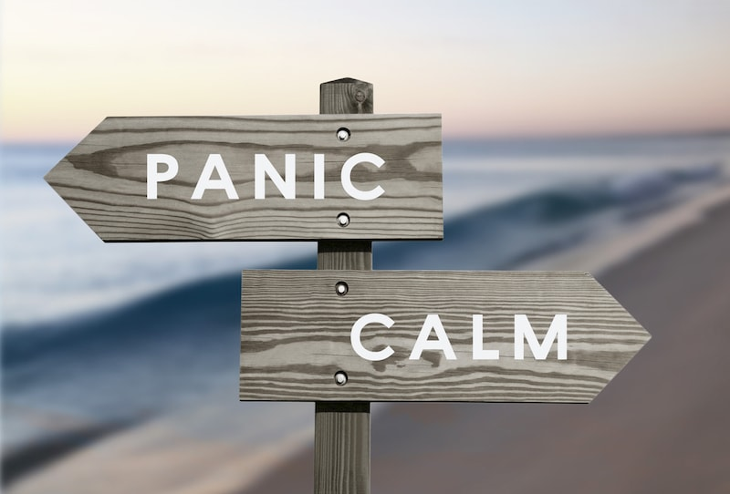panic and calm wooden sign